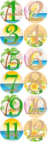 Baby Month Onesie Stickers Baby Shower Surfing Palm Trees Gift Photo Shower Stickers Baby Photo Onesie Milestone Stickers Caribbean Beach Life - 1