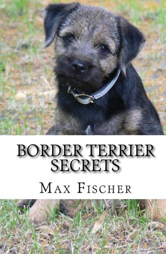 Border Terrier Secrets