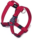 Rogz Reflective 5/8-Inch Snake Dog H-Harness Straightjacket, Small to Medium Adjustable, Red