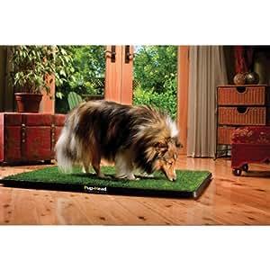 "Pup-Head Portable Dog Potty - Regular Size 20"" x 30"""