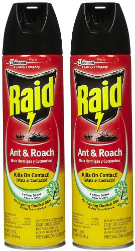 Raid Ant & Roach Killer Insecticide Spray, Lemon, 17.5 oz-2 pk (Roach Spray compare prices)