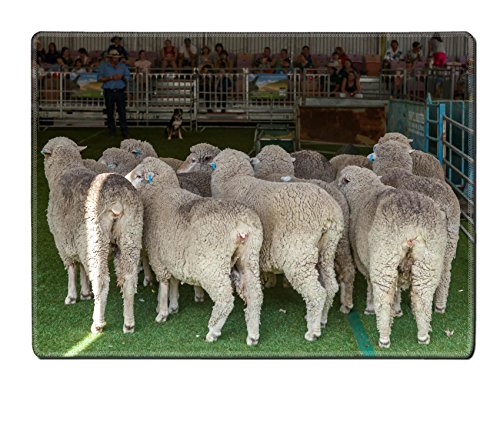 liili-placemat-2015-sydney-royal-easter-show-natural-rubber-material-image-16958187696