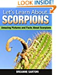 Scorpions: Amazing Pictures and Facts...