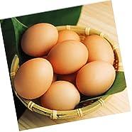放し飼い自然卵『一番鶏』(25個詰)