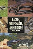 Racers, Whipsnakes and Indigos (Herpetology series)