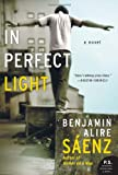 img - for In Perfect Light: A Novel (P.S.) book / textbook / text book