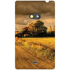 Nokia Lumia 625 Back Cover - Magnificent Designer Cases