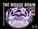 The Mouse Brain in Stereotaxic Coordi...