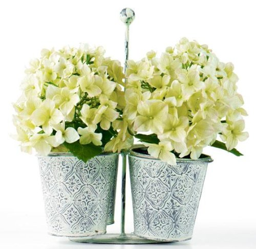Hydrangea In Tin Pot Carrier Set Of 4, SET OF FOUR, GREEN