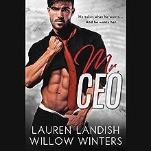 Mr. CEO Audiobook by Lauren Landish, Willow Winters Narrated by Alastair Haynesbridge, Bunny Warren
