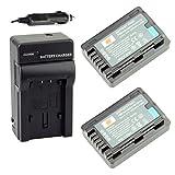 DSTE? 2x VW-VBY100 Battery + DC106 Travel and Car Charger Adapter for Panasonic HC-V110 HC-V110K HC-V110G HC-V201 HC-V201K Digital Camera