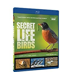 Secret Life of Birds - Blu-ray