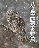 八ヶ岳 四季の野鳥—吉野俊幸写真集 (BIRDER SPECIAL)