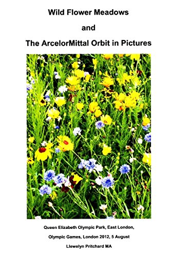 wild-flower-meadows-and-the-arcelormittal-orbit-in-pictures-volume-18-photo-albums