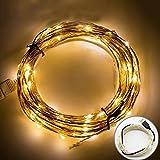 サクララ(Sakulala) LEDライト電飾 USB式 イルミネーション ボールライト クリスマスツリー パーティ 飾り物 装飾品 4メートル 40球 省エネ ワイヤーライト