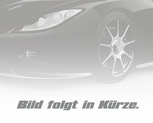 fr-Mercedes-C-Klasse-Cl203-W203-S203-S202-W202-E-Bremsscheibe-Vorne