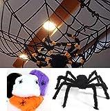 恐怖の館 蜘蛛 蜘蛛の糸 巨大 クモ 黒 蜘蛛 75cm と 蜘蛛 4cm スパイダー ウェブ 蜘蛛の糸 1.5m お化け 屋敷 家 ハロウィン デコレーション 玄関 飾り ホラー