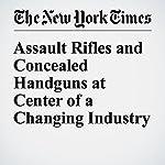 Assault Rifles and Concealed Handguns at Center of a Changing Industry | Barry Meier,Michael J. De La Merced