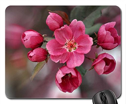 sprig-di-fioritura-alberi-mouse-pad-tappetino-per-mouse-motivo-flowers-mouse-pad