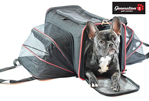 Expandable, Airline Approved Pet Travel Carrier For Small Dogs & Cats By Generation 5 Pets – Steel Construction That Prevents Collapsing – Comfortable Carrying Handles – Spacious 2 Side Expansion