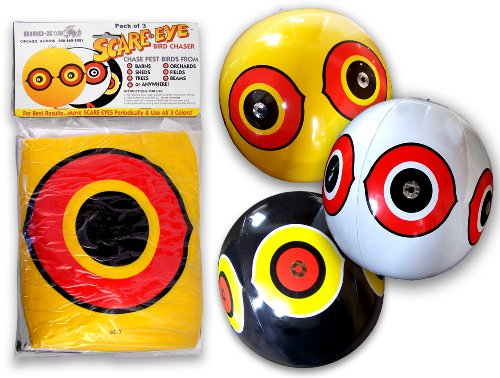 Bird-X SE-PAC Scare Eye Balloon, Pack of 3