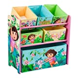 Nickelodeon's Dora the Explorer Multi-Bin Toy Organizer