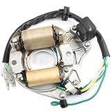 Promax 2-Coil Magneto Stator for 50cc 70 cc 90 cc 110cc 125...