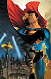img - for Superman/Batman: Night & Day book / textbook / text book