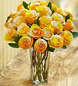 Candy Corn Roses, 12-24 Stems - 24 Stems with Clear Vase - 1-800 ...