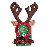 Kyjen PP03373 Holiday Bell Collar Dog Accessories Antler Combo Pack, Medium, Green
