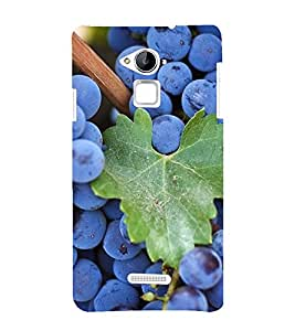 Fuson Premium Back Case Cover Grapes With Black Background Degined For Coolpad Note 3