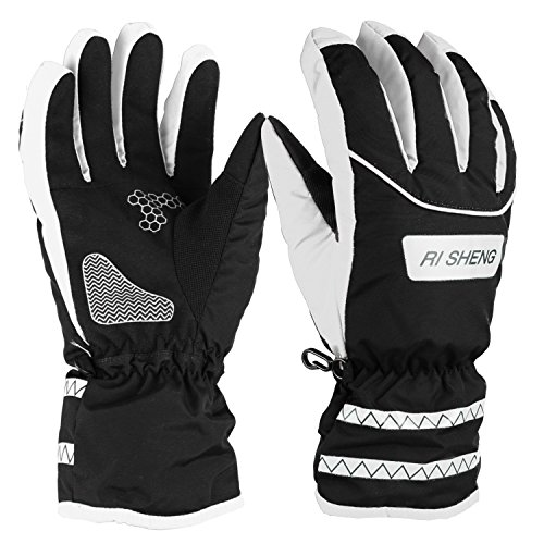 Ski Gloves, Hicool Waterproof Insulated Gloves Thicken Gloves for Skiing, Motorcycle, Riding and More Outwork during the Cold Weather (Black/White, Large)