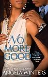 No More Good (View Park Novels)