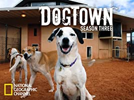 DogTown Season 3