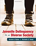 img - for Juvenile Delinquency in a Diverse Society book / textbook / text book