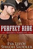 Perfect Ride (Ridden Hard Book 1)