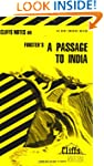 A Passage to India: Cliffs Notes