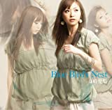 Blue Birds Nest