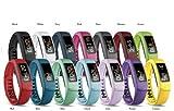 Authentic Garmin Brand Vivofit 2 Replacement Band (Blue, Large)