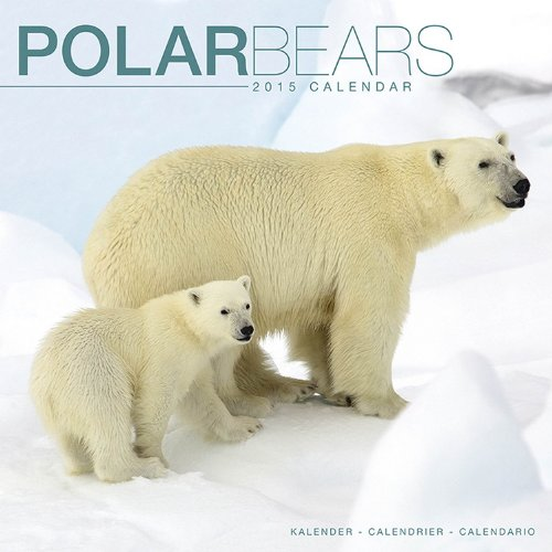 Polar Bears Calendar - 2015 Wall calendars -