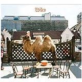 Wilco (The Album) ~ Wilco