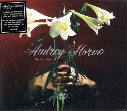No Hay Banda by Audrey Horne