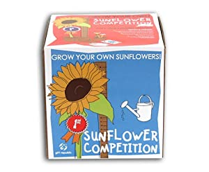 Sow And Grow Sunflower Competition