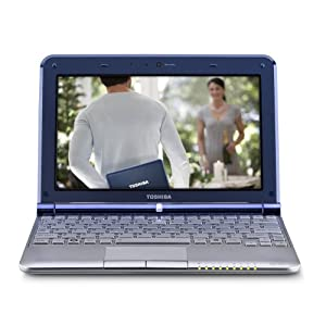 Toshiba Mini NB305-N310 10.1-Inch Netbook