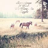 Too Many Birds ~ Bill Callahan