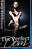 The Perfect Dom (BDSM Erotica)