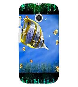 ColourCraft Beautiful Fish Design Back Case Cover for MOTOROLA MOTO E