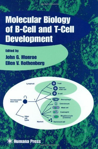 molecular-biology-of-b-cell-and-t-cell-development-contemporary-immunology-1998-05-01