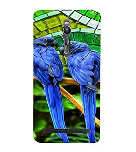 PrintVisa Birds Parrot Colorful 3D Hard Polycarbonate Designer Back Case Cover for Asus Zenfone 2