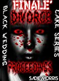 img - for DIVORCE PROCEEDINGS book / textbook / text book